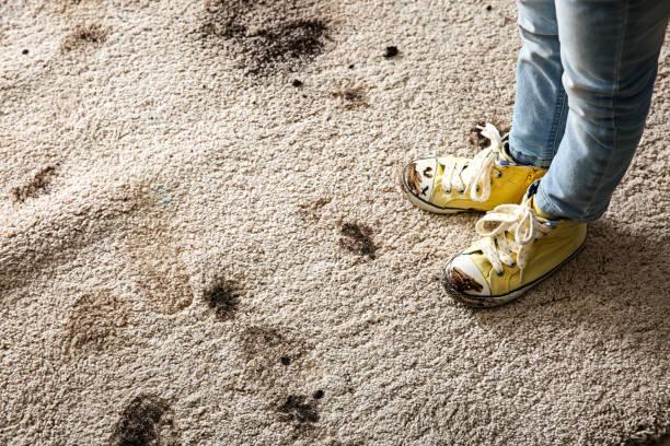 כתמי רגליים על שטיח
